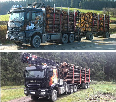 bild holztransport